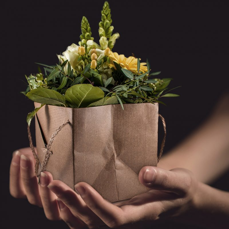 plant-flower-celebration-bouquet-gift-vase-1412037-pxhere.com